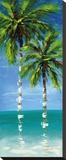 Coastal Palm IV Stretched Canvas Print by J. Martin