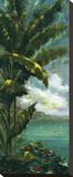 Palm Cove I Stretched Canvas Print by J. Martin