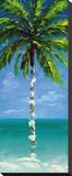 Coastal Palm III Stretched Canvas Print by J. Martin