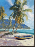 Island Dream Stretched Canvas Print by Nenad Mirkovich