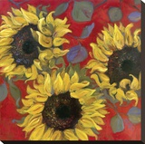 Sunflower I Stretched Canvas Print by Shari White