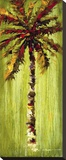Coastal Palm VI Stretched Canvas Print by J. Martin