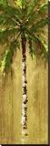 Coastal Palm V Stretched Canvas Print by J. Martin