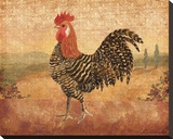 Florentine Rooster I Stretched Canvas Print by Lisa Ven Vertloh