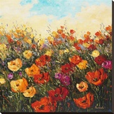 Poppy Dance I Stretched Canvas Print by Peggy Corthouts