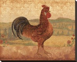 Florentine Rooster II Stretched Canvas Print by Lisa Ven Vertloh
