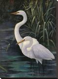 Egrets On Blue Impressão em tela esticada por  Robertson