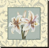 Lillies With Scroll Stretched Canvas Print by Catherine Jones