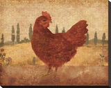 Tuscan Hen II Stretched Canvas Print by Lisa Ven Vertloh