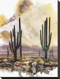 Sonoran Sentinels Stretched Canvas Print by Adin Shade