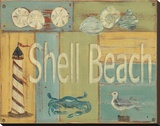 Shell Beach Stretched Canvas Print by Grace Pullen