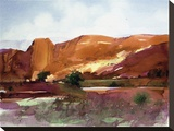 Red Rock Canyon Stretched Canvas Print by Tom Perkinson