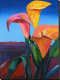 Calypso III Stretched Canvas Print by Patrick Coffaro