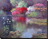 Glowing Watergarden Stretched Canvas Print by Kent Wallis