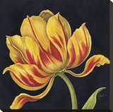 Fleur Rouge Et Jaune Stretched Canvas Print by Constance Lael