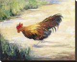 Amigo Mio Stretched Canvas Print by Mary Schaefer