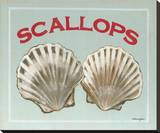 Scallops Stretched Canvas Print by Catherine Jones