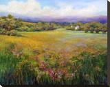 Morning Mist Stretched Canvas Print by Jan E. Moffatt