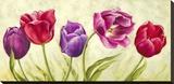 Tulipani danzanti Stretched Canvas Print by Silvia Mei