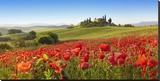 Orcia valley in spring, Tuscany (detail) Lærredstryk på blindramme af Fabio Muzzi