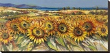 Campo di girasoli Stretched Canvas Print by Luigi Florio