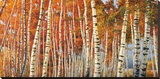 Betulle d'autunno Stretched Canvas Print by Adriano Galasso