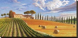 Colline toscane Stretched Canvas Print by Adriano Galasso