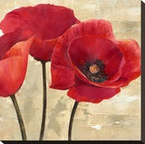 Red Poppies (detail) Stretched Canvas Print by Cynthia Ann