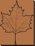 Leaf IV Stretched Canvas Print by Michael Banks