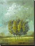 Wistful Stretched Canvas Print by Jennifer Lanne