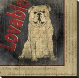Bull Dog Stretched Canvas Print by Karen J. Williams