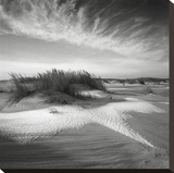 Sand & Snow Stretched Canvas Print by Richard Calvo