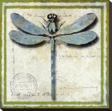 Dragonfly Stretched Canvas Print by Karen J. Williams