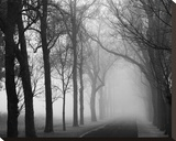 Foggy Lane Stretched Canvas Print by Keith Dotson