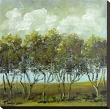 Walking Trees Stretched Canvas Print by Jennifer Lanne