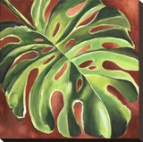 Feuille de Philodendron Stretched Canvas Print by Constance Lael