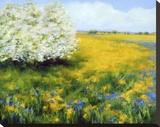 Spring I Stretched Canvas Print by Jan E. Moffatt