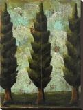 Poplar Farm Stretched Canvas Print by Jennifer Lanne
