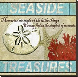 Seaside Treasures Stretched Canvas Print by Karen J. Williams