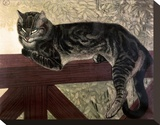 Cat on the Balustrade Stretched Canvas Print by Th&#233;ophile Alexandre Steinlen