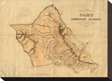 Oahu, Hawaiian Islands, c.1881 Stretched Canvas Print