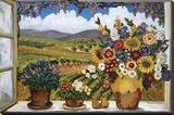 Suzanne Etienne - Debbie's View Reprodukce na plátně