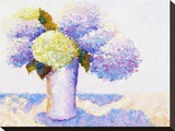 Hydrangeas in Sun II Stretched Canvas Print by Gail Wells