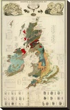 Composite: Geological and Palaeontological Map of the British Islands, c.1854 Stretched Canvas Print by Alexander Keith Johnston