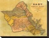 Oahu, Hawaiian Islands, c.1899 Stretched Canvas Print by T. D. Beasley