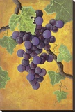 Red Wine Grapes Stretched Canvas Print by Jennifer Lorton
