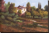 La Casa Nel Bosco Stretched Canvas Print by  Furtesen
