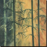 Bamboo Groove I Stretched Canvas Print by Kate Ruff