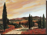 Tuscan Sunset II Stretched Canvas Print by D. J. Smith