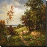 Streamside Trail Stretched Canvas Print by  Rhes
